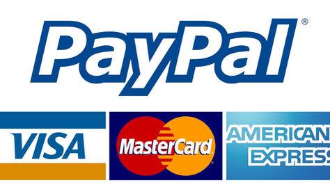 Servicio-internet-Paypal-Foto-Internet_L